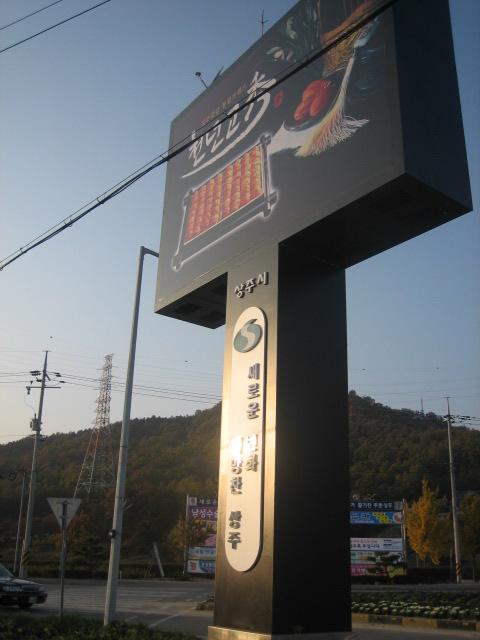 IMG_9387